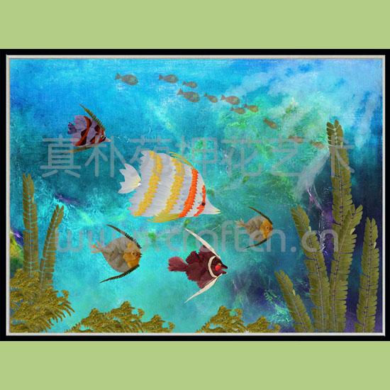 押花装饰画sc6080-2301海底世界(一)